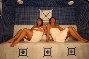 Keramické parné sauny, Fisa sauny, luxusné parné kabíny, sauny, wellness, Saunabau, parná sauna, predaj sáun